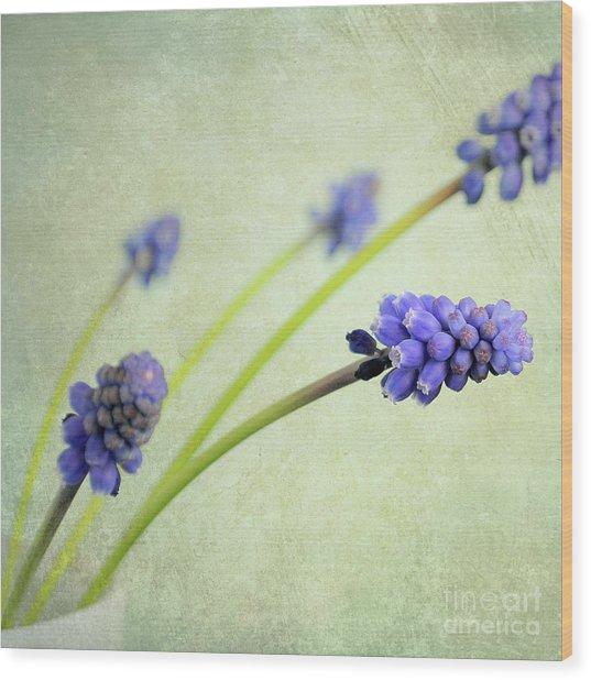 Hyacinth Grape Wood Print