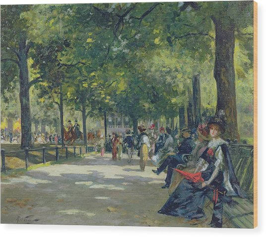 Hyde Park - London  Wood Print