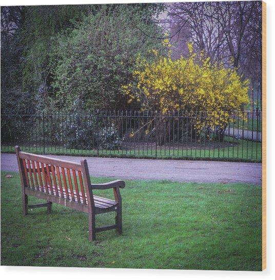 Hyde Park Bench - London Wood Print