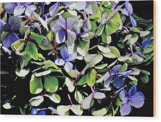 Hydrangea Wood Print