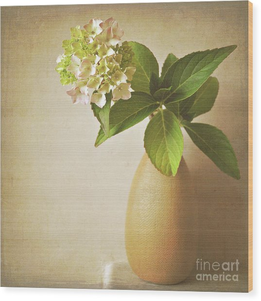 Hydrangea With Leaves Wood Print