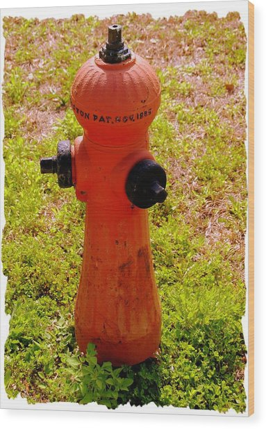Hydrant 1885 Wood Print by Andrew Armstrong  -  Mad Lab Images