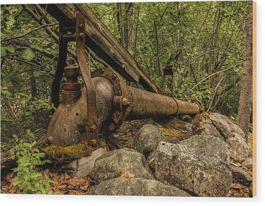 Wood Print featuring the photograph Hydraulic Monitor by Fred Denner