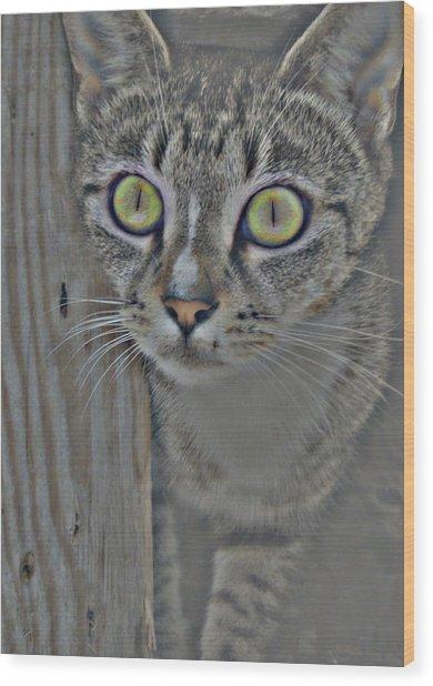 Hypnotize Wood Print by JAMART Photography
