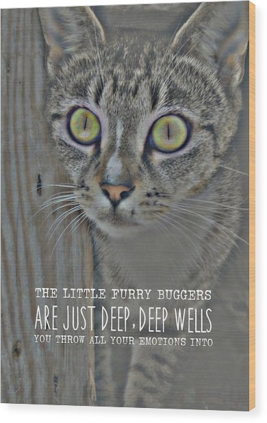 Hypnotize Quote Wood Print by JAMART Photography