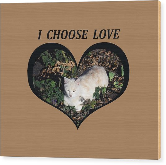I Chose Love With A Cat Enjoying Catnip In A Garden Wood Print