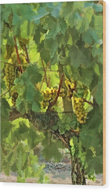 I Heard It On The Grapevine Wood Print by Patricia Stalter
