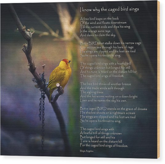 I Know Why The Caged Bird Sings By Maya Angelou Wood Print by Maria Angelica Maira