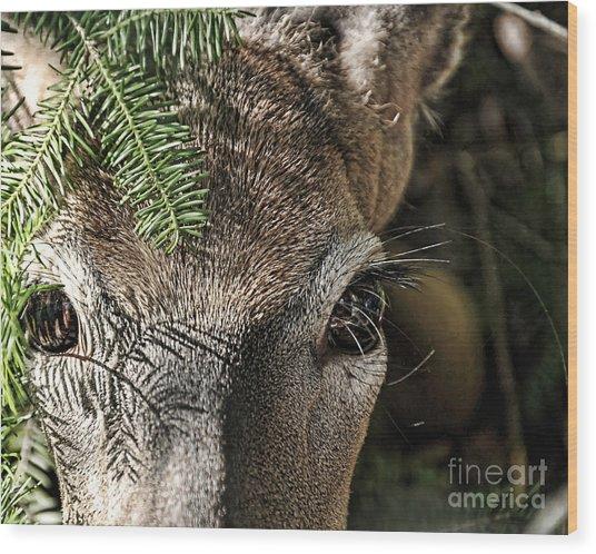 I See You Ginkelmier Inspired Deer Wood Print