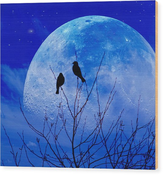 I Would Give You The Moon Wood Print