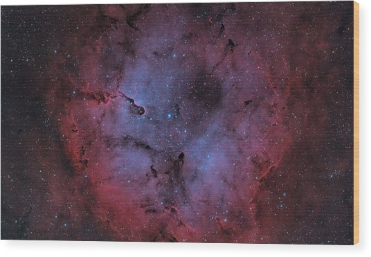 Ic 1396 Wood Print by Brian Peterson