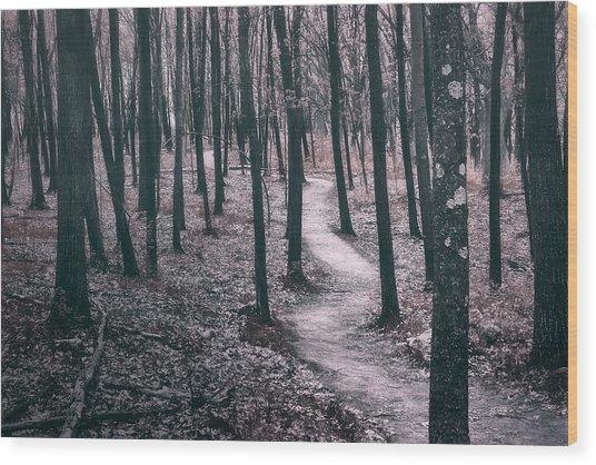 Ice Age Trail Near Lapham Peak Wood Print