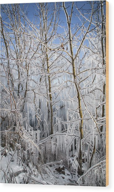 Ice Curtain Wood Print