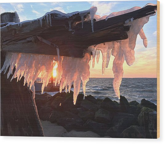 Ice Fangs Wood Print