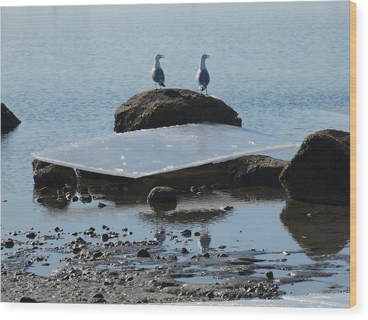 Ice Monolith Wood Print