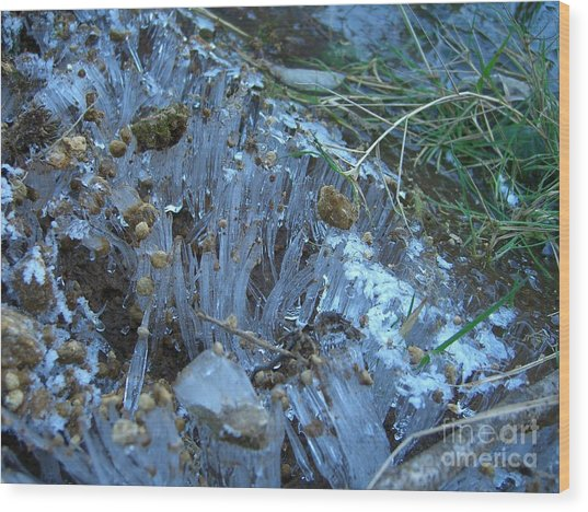 Ice Shards Wood Print by Jim Thomson