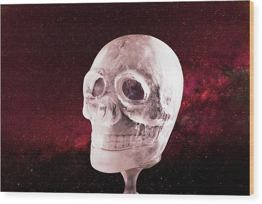 Ice Skull Wood Print