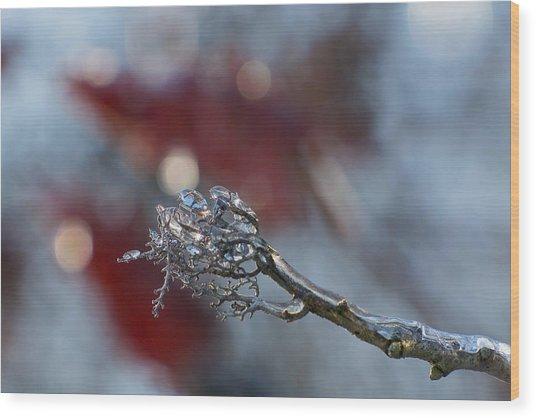 Ice Wand Wood Print