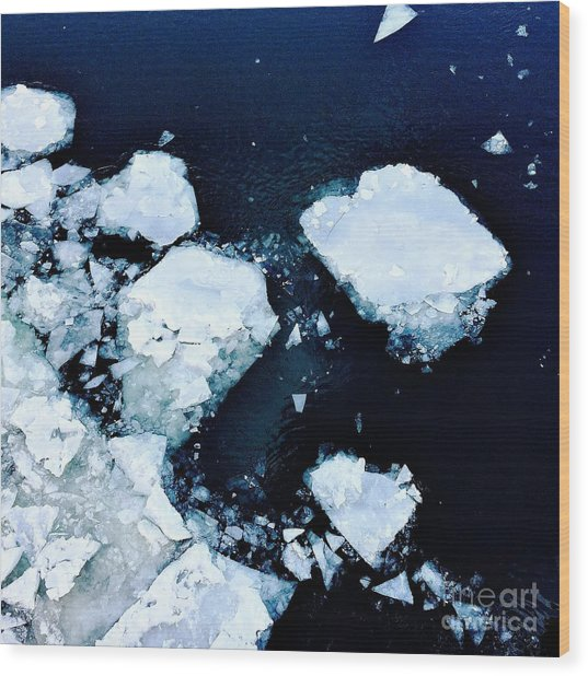 Iced Beauty #1 Wood Print