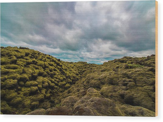Iceland Moss And Clouds Wood Print