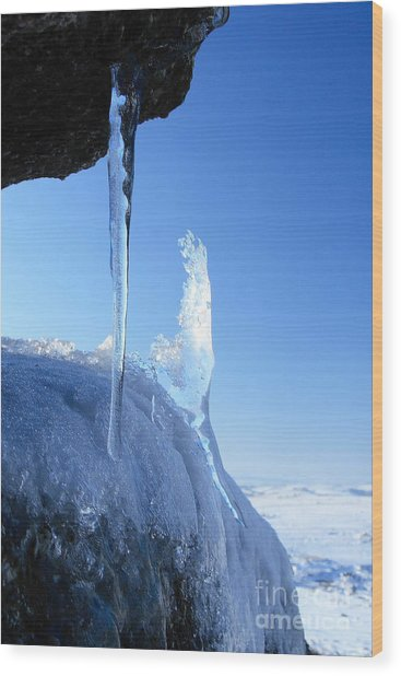 Icicle Wood Print by Carl Whitfield