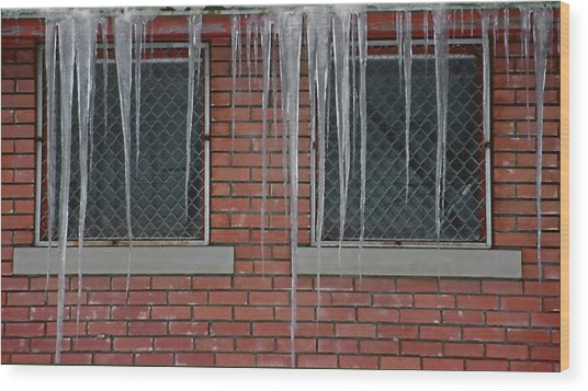 Icicles 2 - In Front Of Windows Off Red Brick Bldg. Wood Print by Steve Ohlsen