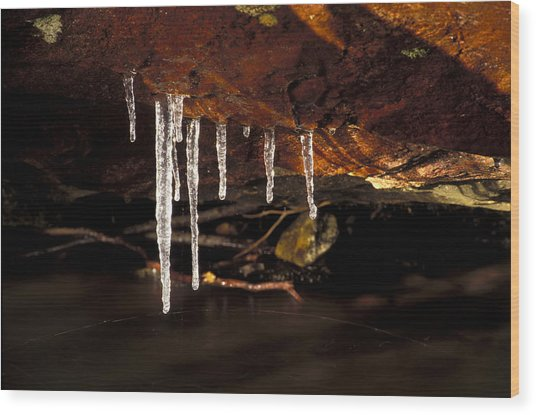 Icicles Wood Print by Richard Steinberger