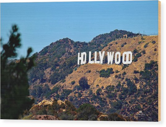 Iconic Hollywood Sign Wood Print