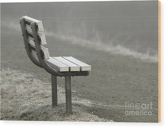 Icy Bench In The Fog Wood Print