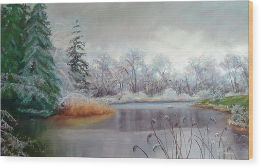 Icy Connecticut Morning Wood Print by Linda Preece