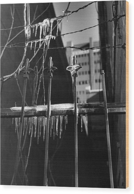 Icy Gates Wood Print by Jim Furrer