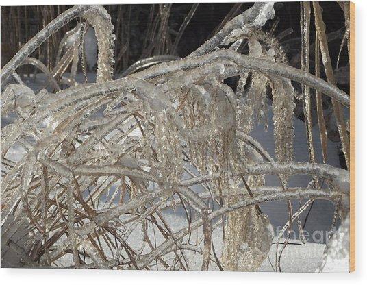 Icy Grass Wood Print