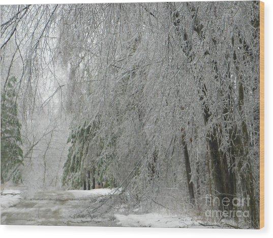 Icy Street Trees Wood Print