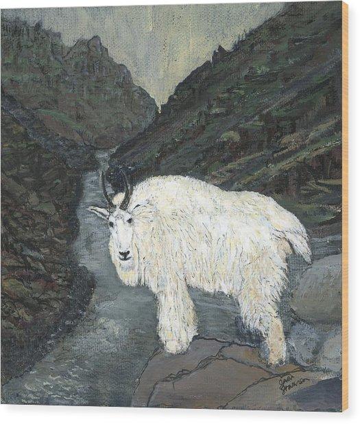 Idaho Mountain Goat Wood Print