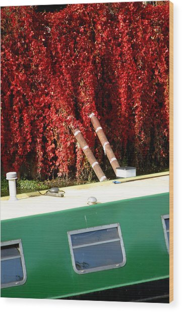 If Only It All Looked Like This Wood Print by Jez C Self