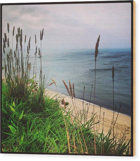 #igaddict #iphonesia #beach #cliff Wood Print by Ben Berry