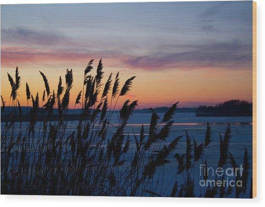 Illinois River Winter Sunset Wood Print