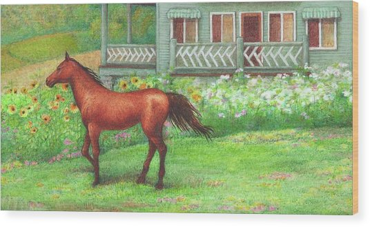 Illustrated Horse Summer Garden Wood Print