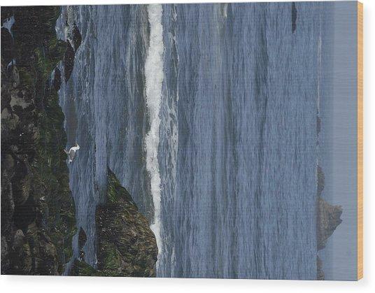 Image 1288050075 Wood Print
