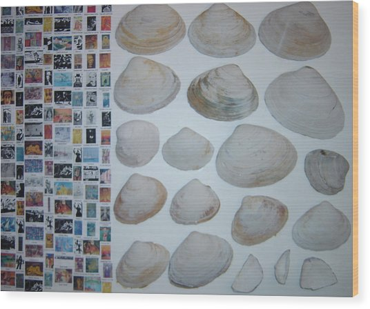 Images And Shells Wood Print by Biagio Civale