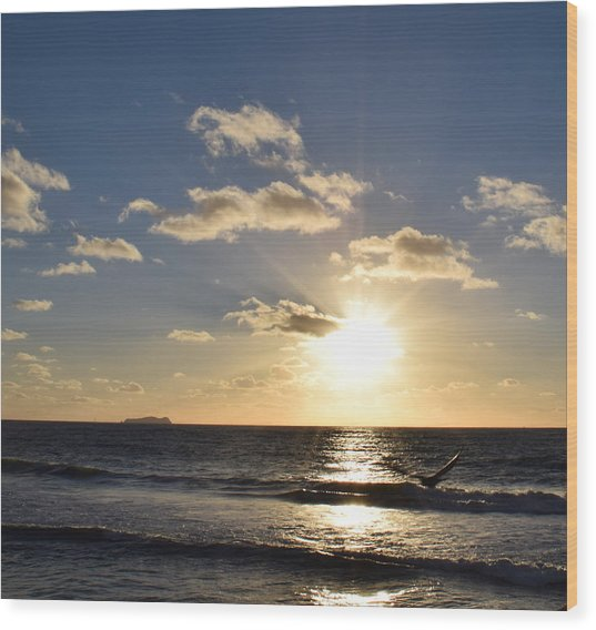 Sunset Reflection At Imperrial Beach Wood Print