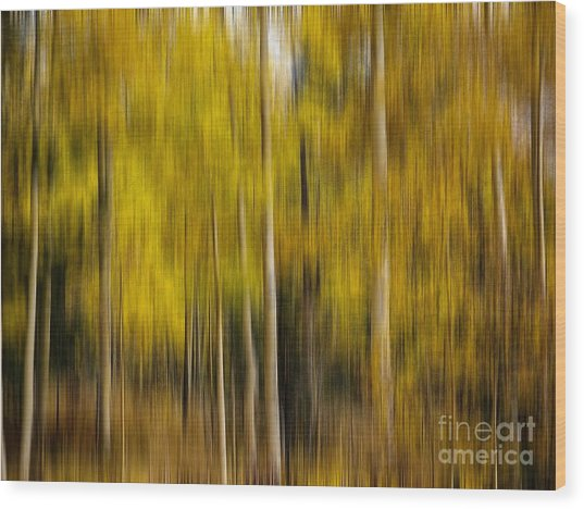 Impression Of Autumn Wood Print