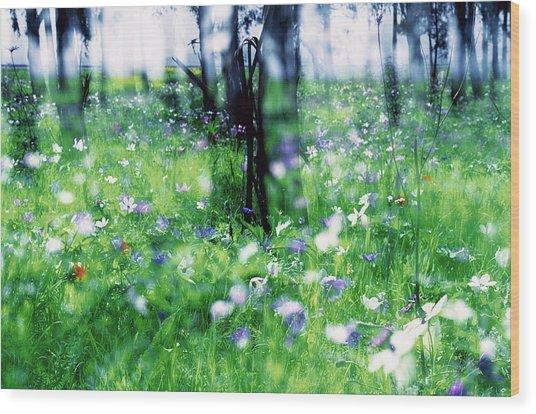Impressionistic Photography At Meggido 1 Wood Print