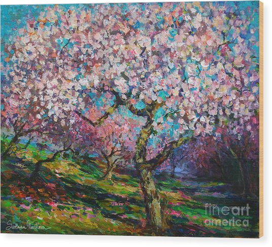 Impressionistic Spring Blossoms Trees Landscape Painting Svetlana Novikova Wood Print