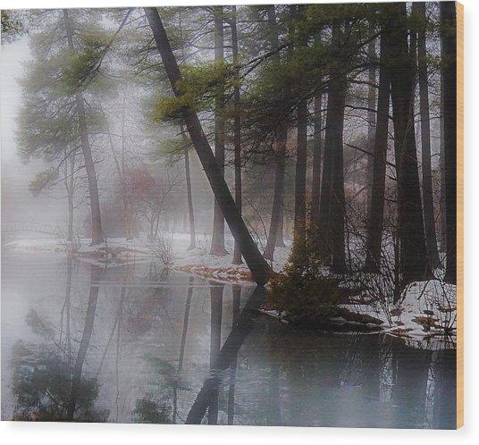 In A Fog Wood Print