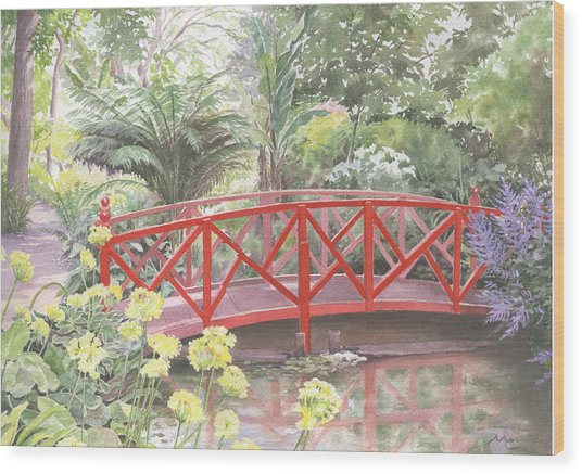 In Abbotsbury Subtropical Gardens. Wood Print by Maureen Carter