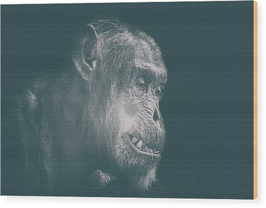 In Deep Thought Wood Print