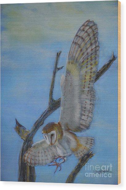 In Flight Barn Owl Wood Print