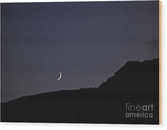 In Search Of Atlantis-4 Wood Print