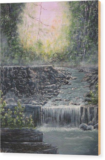 In The Beginning Wood Print by Sheila Banga